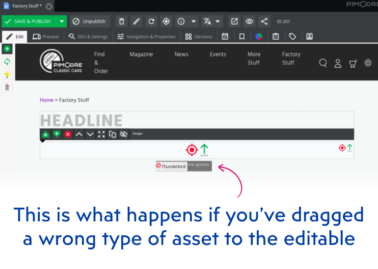 Dragging a wrong type of asset to the editable in Pimcore admin