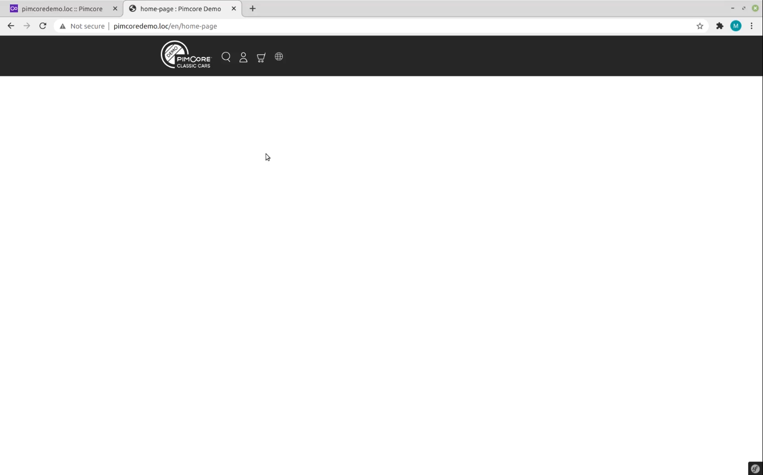 Preview of blank landing page in Pimcore