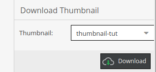 Downloading the thumbnail created in Pimcore administration